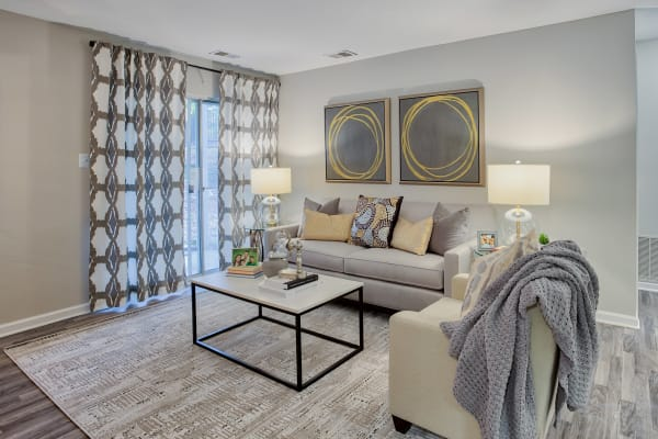 Features at apartments in Midlothian, Virginia