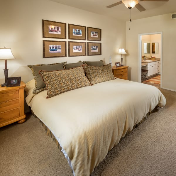 Well-decorated master bedroom with ceiling fan and en suite bathroom at Stone Oaks in Chandler, Arizona