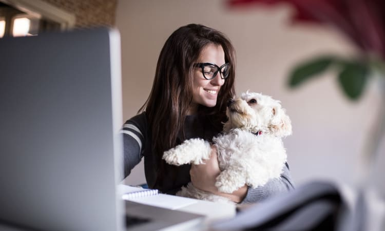 Women working from with her pup at Town Court in West Bloomfield, Michigan