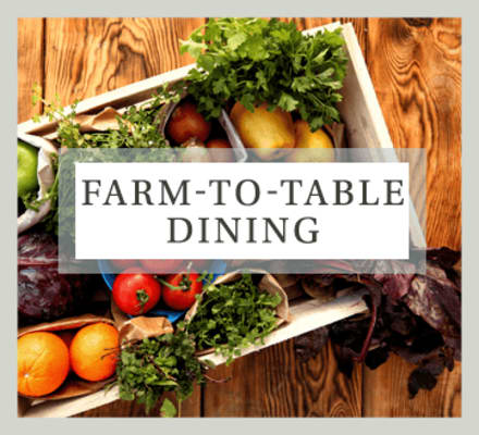 Farm-to-table dining is a cornerstone of the Maplewood Senior Living philosophy.