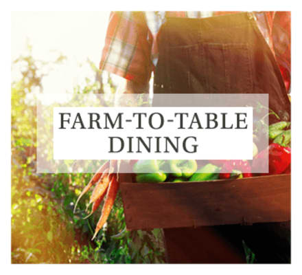 Visit our dining page for more information about our fresh farm-to-table meals served at Maplewood at Strawberry Hill in East Norwalk, Connecticut
