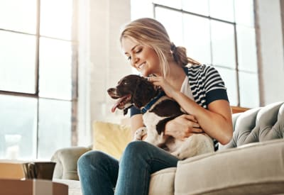 View the pet policy at Shadow Woods in Oakland, California