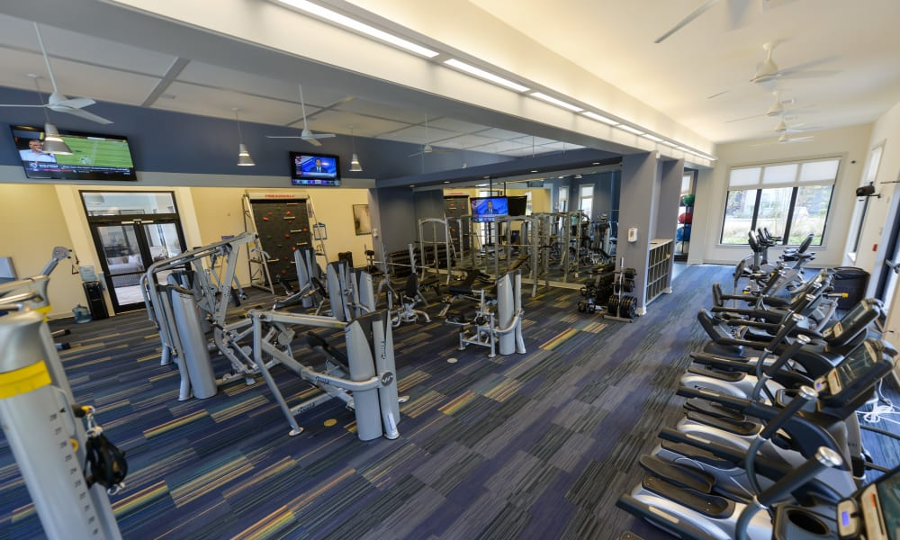 Cardio machines galore in the fitness center at Cabana Club and Galleria Club in Jacksonville, Florida