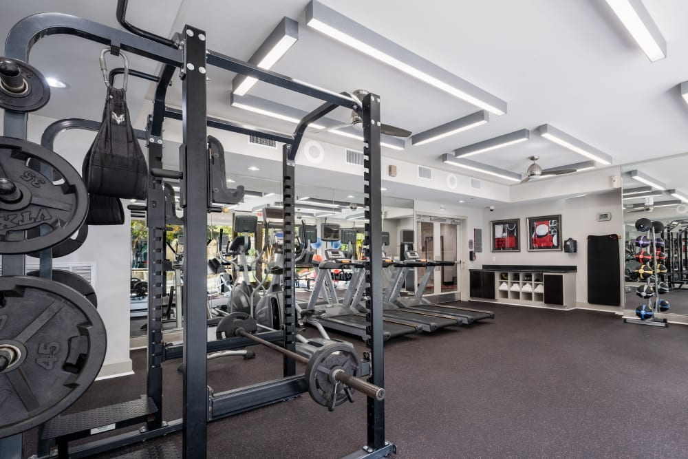 Addison Keller Springs in Addison, Texas offers a fitness center