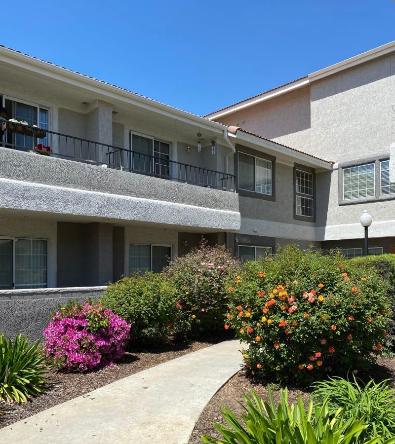 walking path at Pacifica Senior Living Fresno in Fresno, California