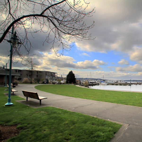 Park bench overlooking the lake near The 101 in Kirkland, Washington