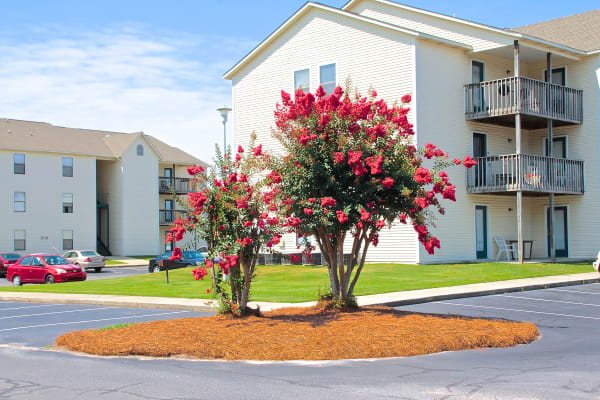 Enjoy well maintained grounds at Falcon Village Apartments in Fayetteville, North Carolina