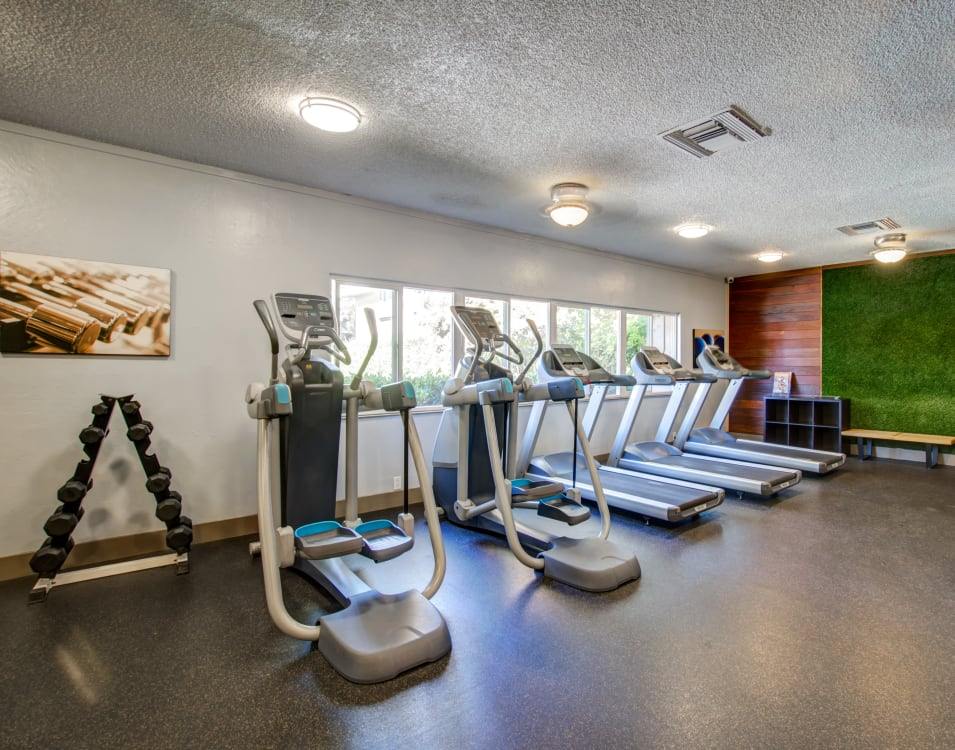 Weights and cardio machines in the fitness center at Waterstone Fremont in Fremont, California