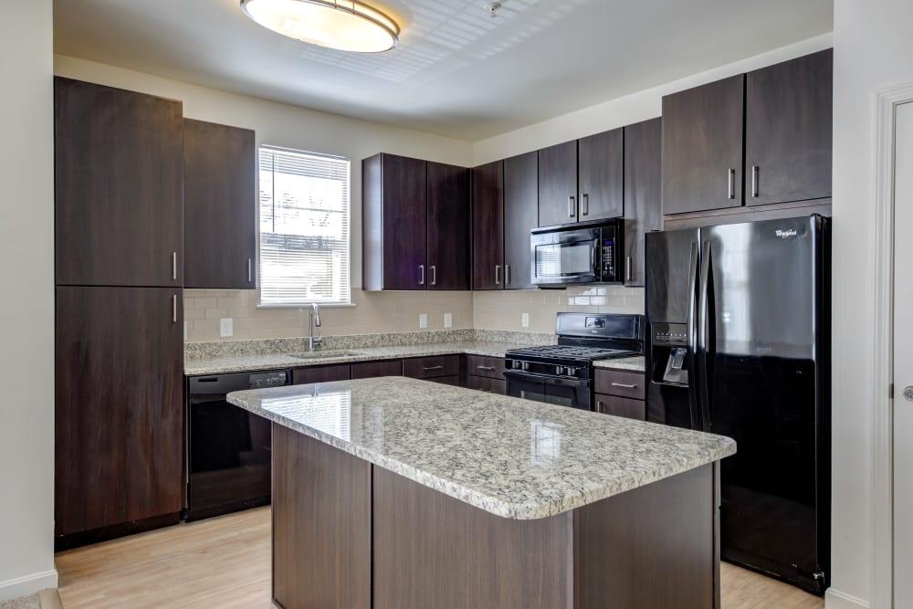 Dark wood kitchen in Canton, Massachusetts