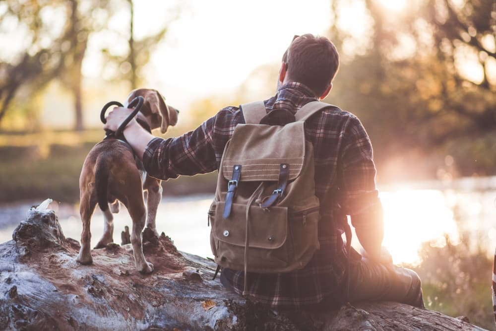 Man hiking with dog in Austin, TX near Alta Tech Ridge