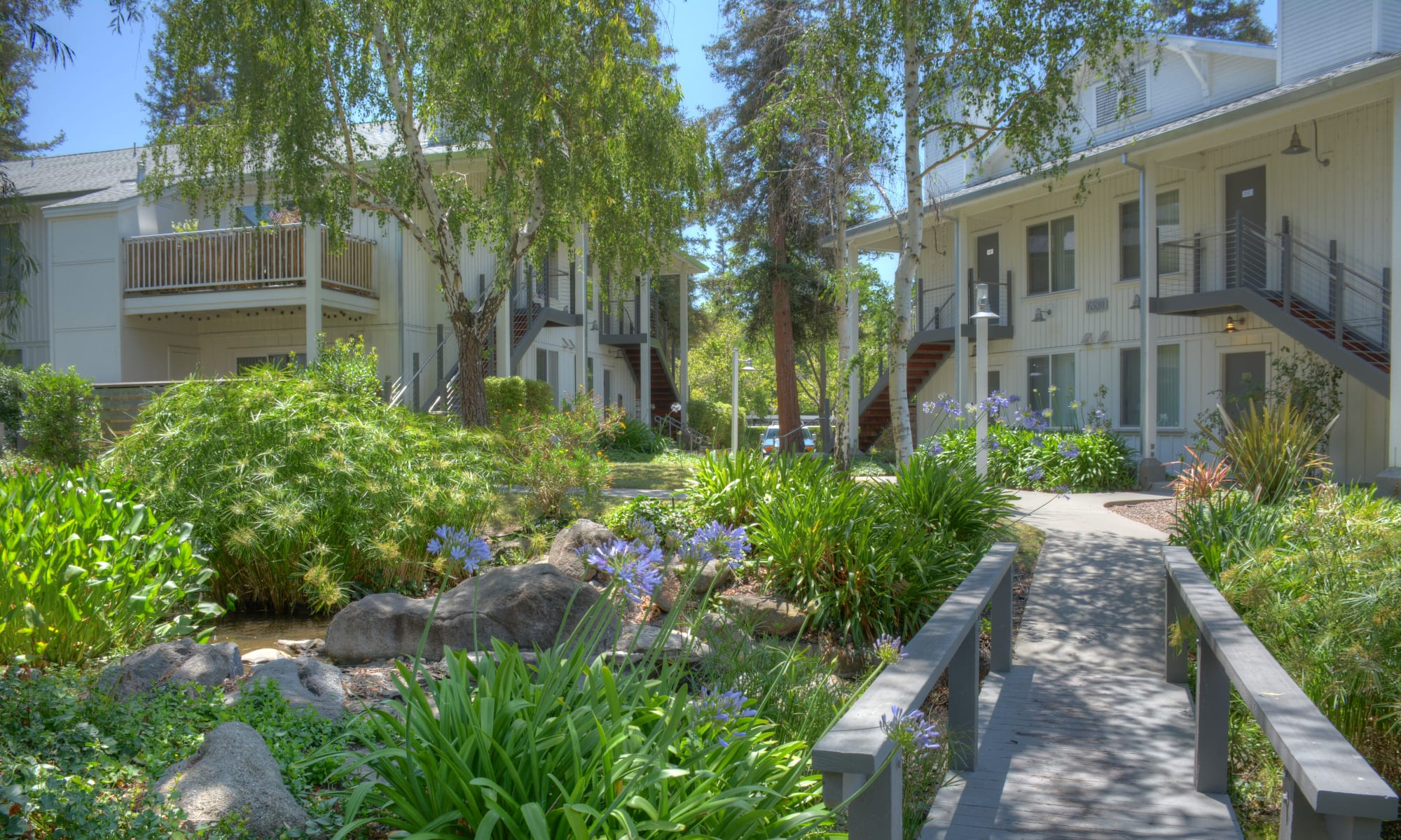 Cotton Wood Apartments in Dublin, California
