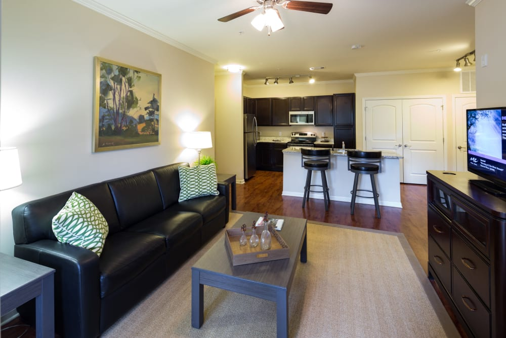 Model living room at The Preserve at Hardin Valley in Knoxville, Tennessee