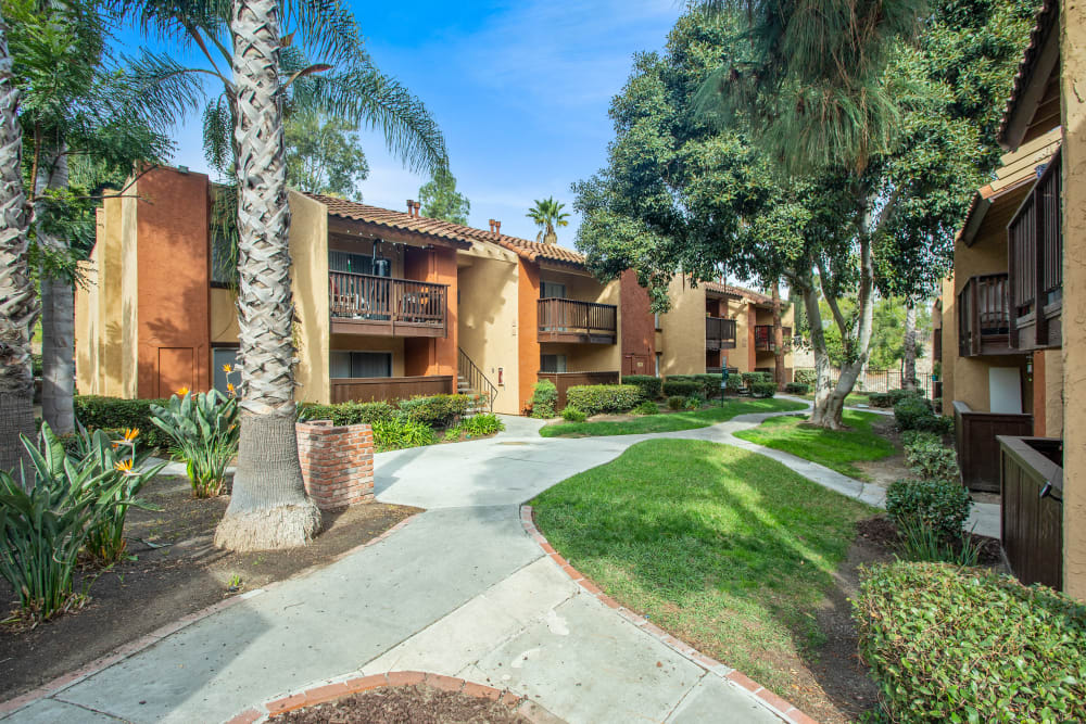 Community courtyard area at Shadow Ridge Apartments in Oceanside, California