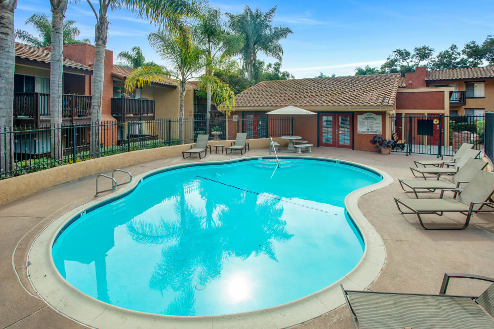 Beautiful resort-style swimming pool with lounge chairs and palm trees at Shadow Ridge Apartments in Oceanside, California