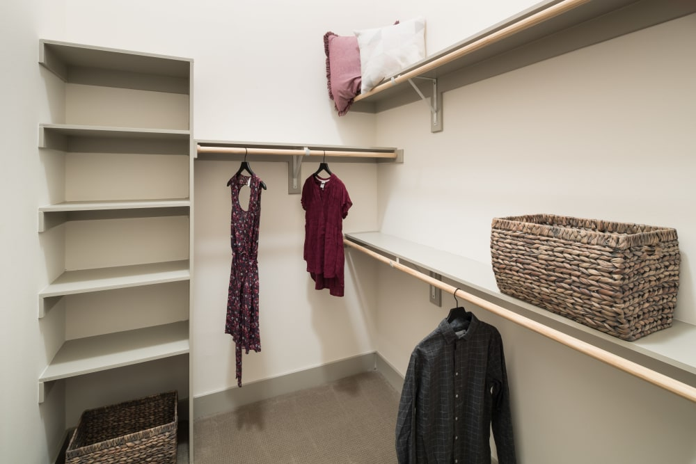 Enjoy apartments with spacious walk-in closets at Alta Frisco Square