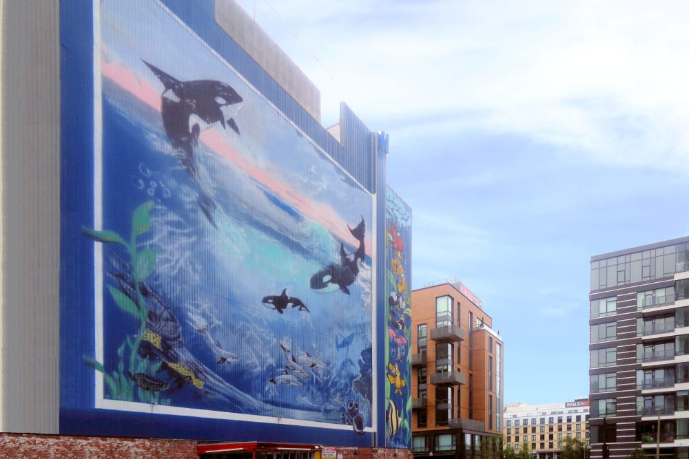 Mural of whales on the side of the building at Prime Storage in Boston, Massachusetts