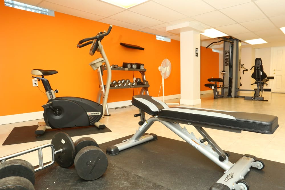 Stay healthy in the The Meadows on Cherry Hill fitness center in Westland, Michigan