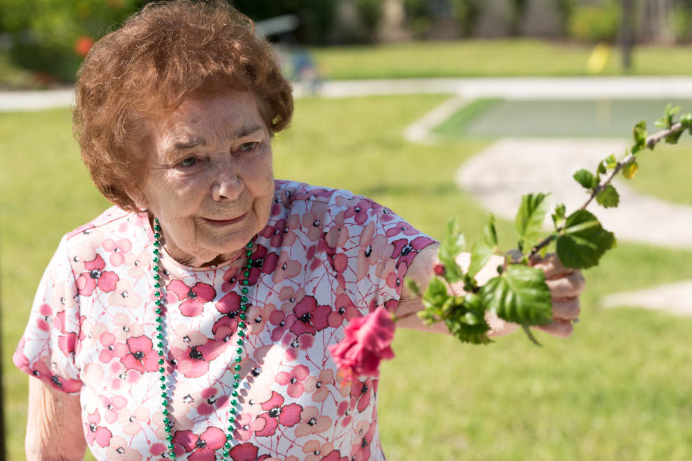 A resident helping plant flowers and plants at Inspired Living in Sarasota, Florida.