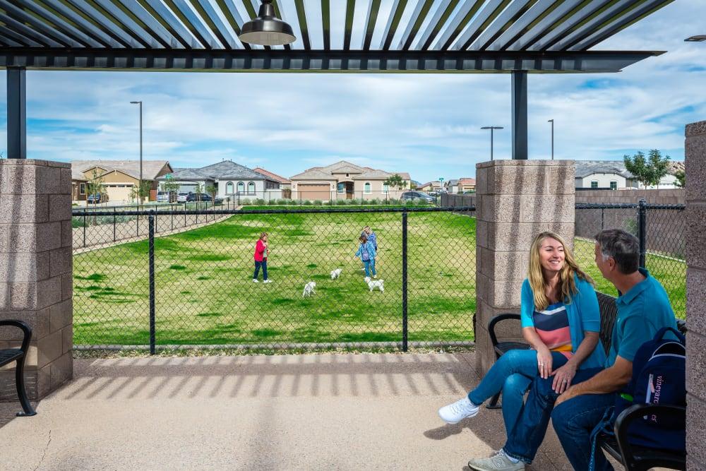 Second dog park, a Master-Plan Community Amenity at Tavalo at Cadence in Mesa, Arizona