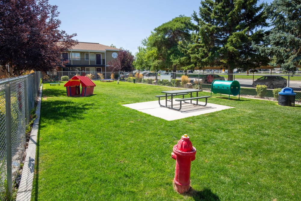 Outdoor park for dogs to run around in at Callaway Apartments in Taylorsville, Utah