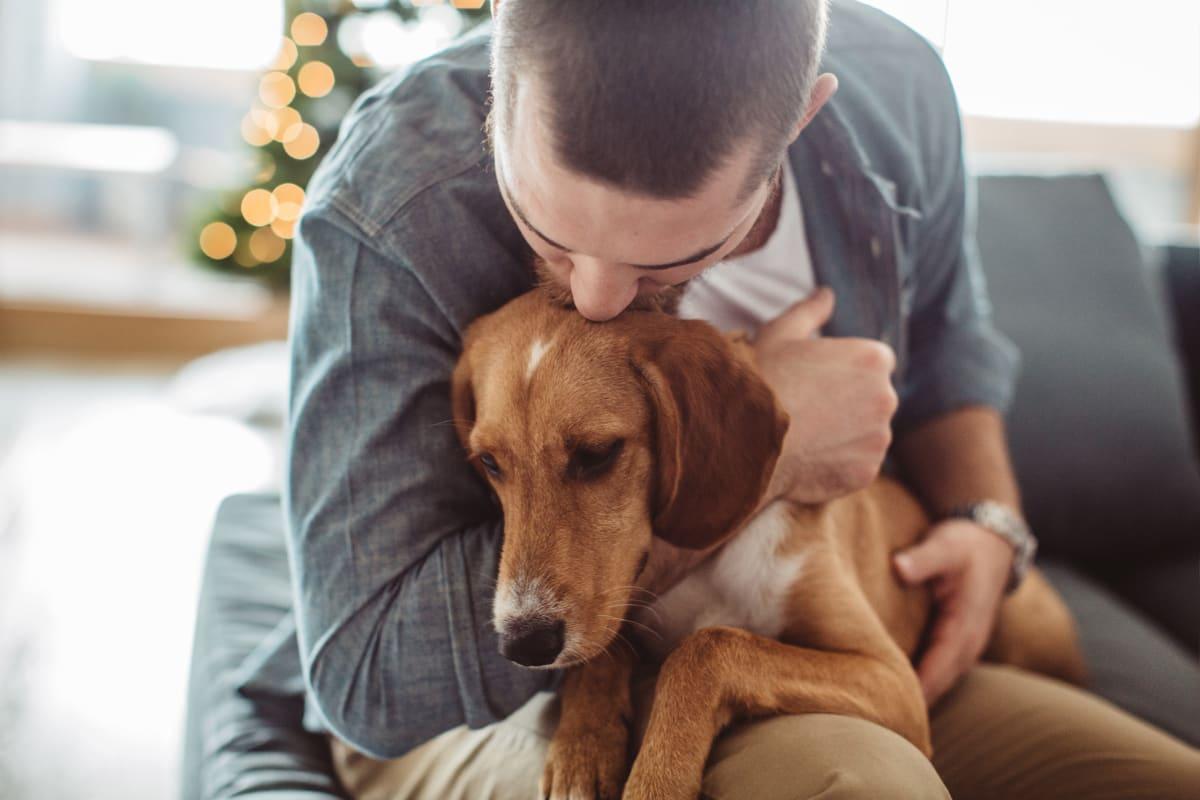 Resident hugging his dog at Fennaway Green in Cazenovia, New York