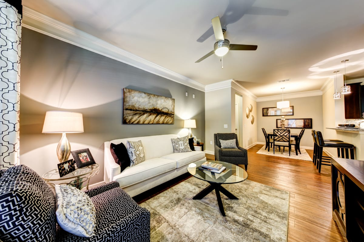 Well decorated living space at a property owned by CWS Apartment Homes in Austin, Texas