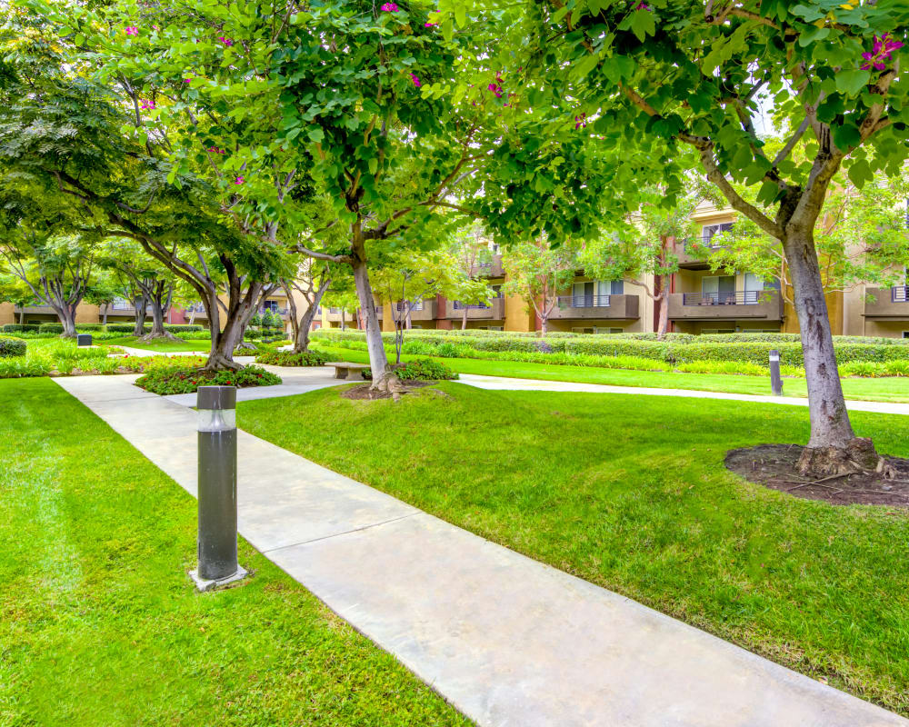 Beautifully maintained green spaces at Sofi Irvine in Irvine, California