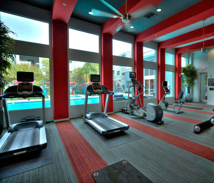 Fitness area at Avenue 25 Apartments