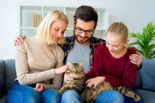 Family with a cat at Enclave 50 in Ballston Spa, New York