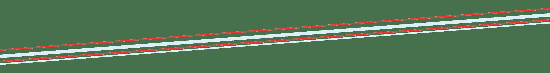 Divider Image