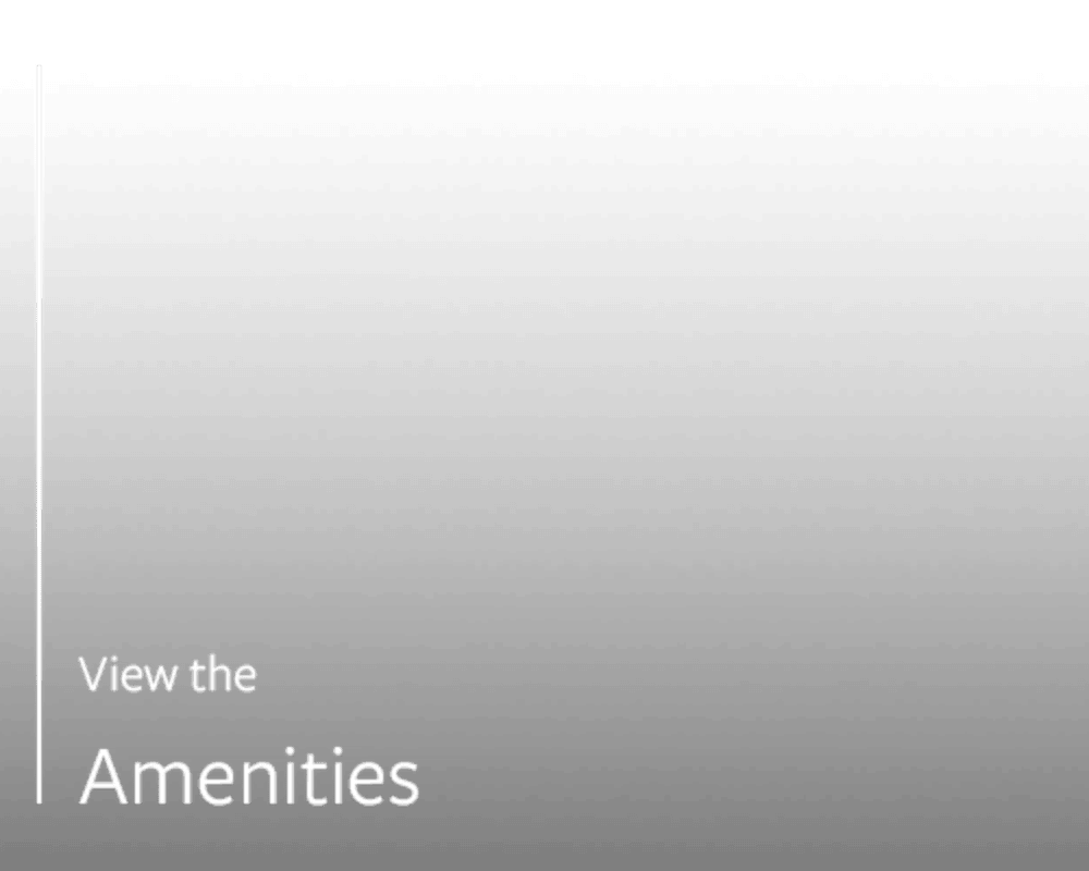 Link to amenities at The Franklin in Marietta, Georgia