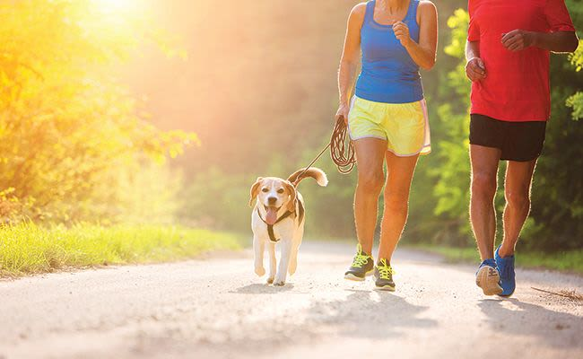 Residents running with dog on a trail near The Elms of Bloomfield in Bloomfield, NY