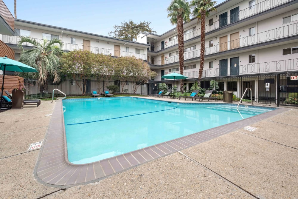 Resort-style pool with palm trees and shaded seating nearby at Sofi Redwood Park in Redwood City, California