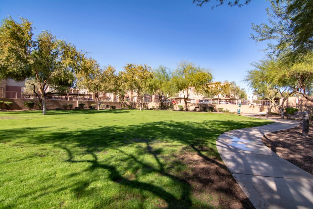 Outdoor grassy area with walkways at apartments in Surprise, Arizona