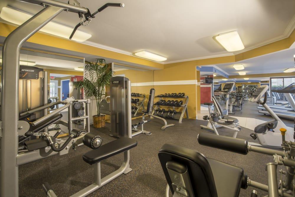 Exercise room at Saddle Creek Apartments in Novi, Michigan