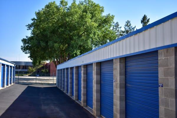 A big tree behind exterior storage units at STOR-N-LOCK Self Storage in Sandy, Utah