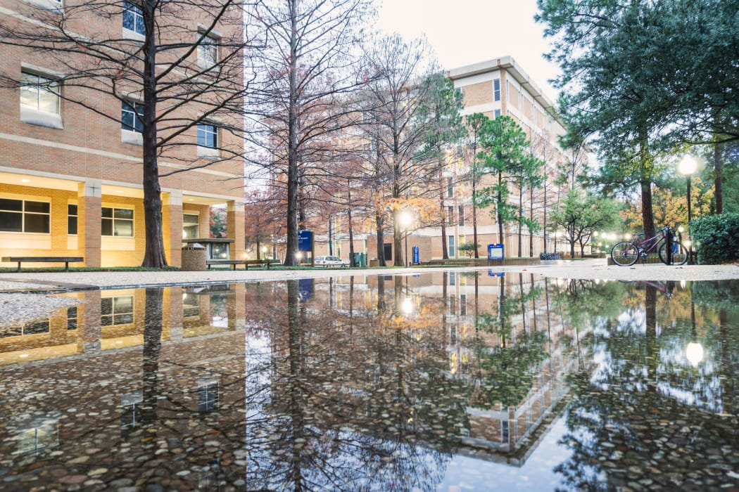 The University of Texas at Arlington after the rain near Veridian Place in Dallas, Texas
