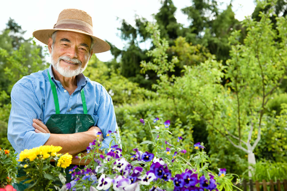 Contact Blossom Vale Senior Living in Orangevale, California to learn more about our Programs.