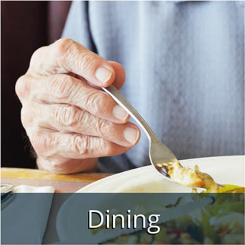 View our Assisted living dining options at White Springs Senior Living in Warrenton, Virginia