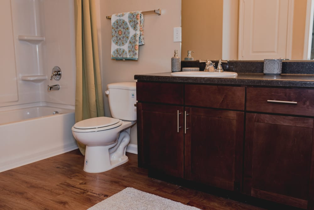 Relaxing Master Bathroom at Springs at Creekside in New Braunfels, TX