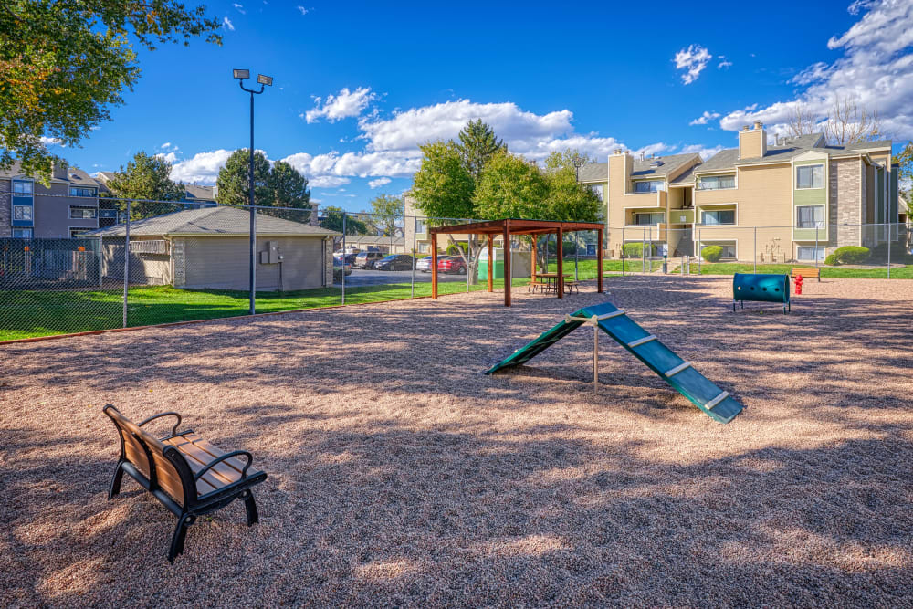 Have fun with your furry friend in the dog park at Alton Green Apartments in Denver, Colorado