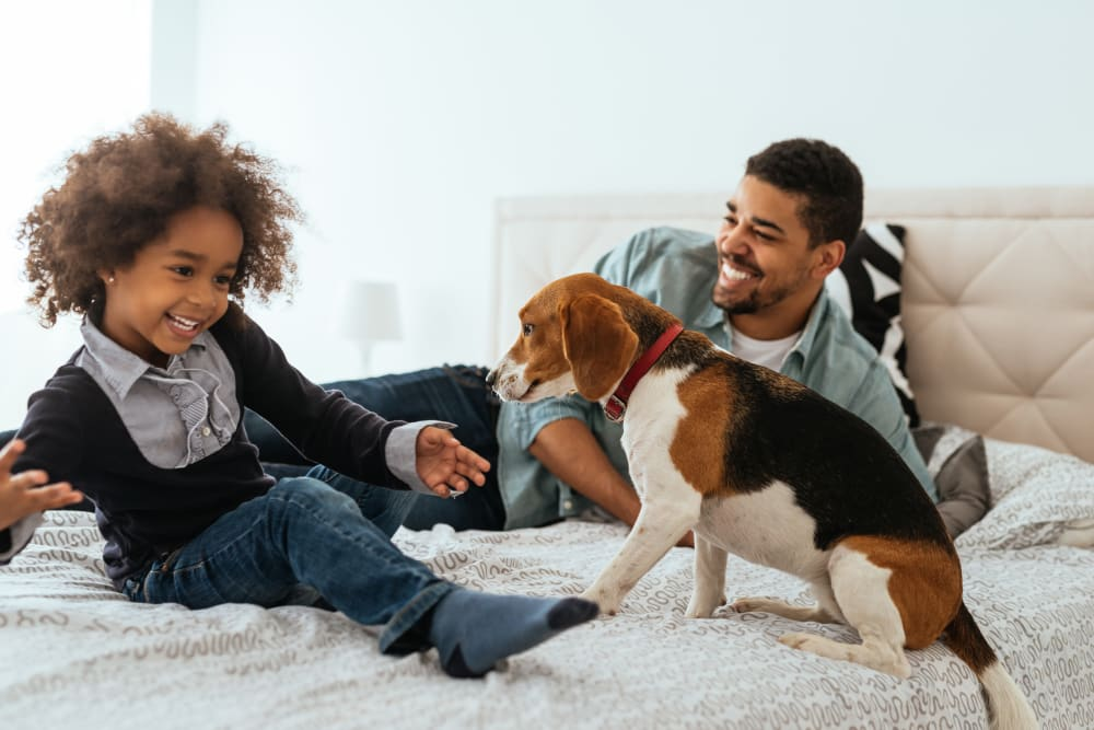 A father, son and their dog enjoying their new apartment at Crossroads at City Center Apartments in Aurora, Colorado