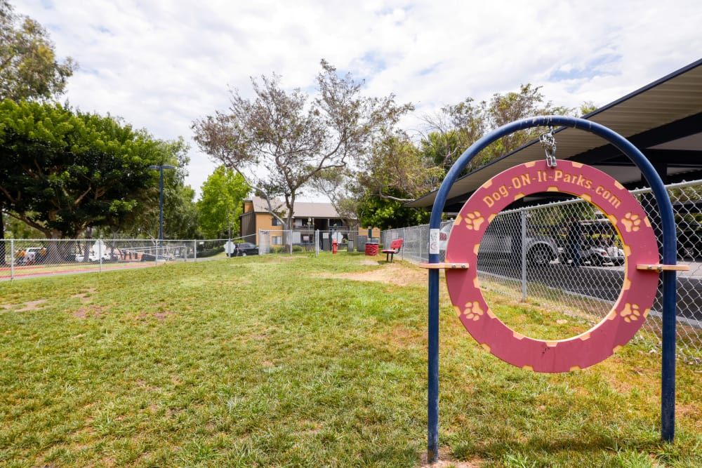dog park at Presidio at Rancho Del Oro