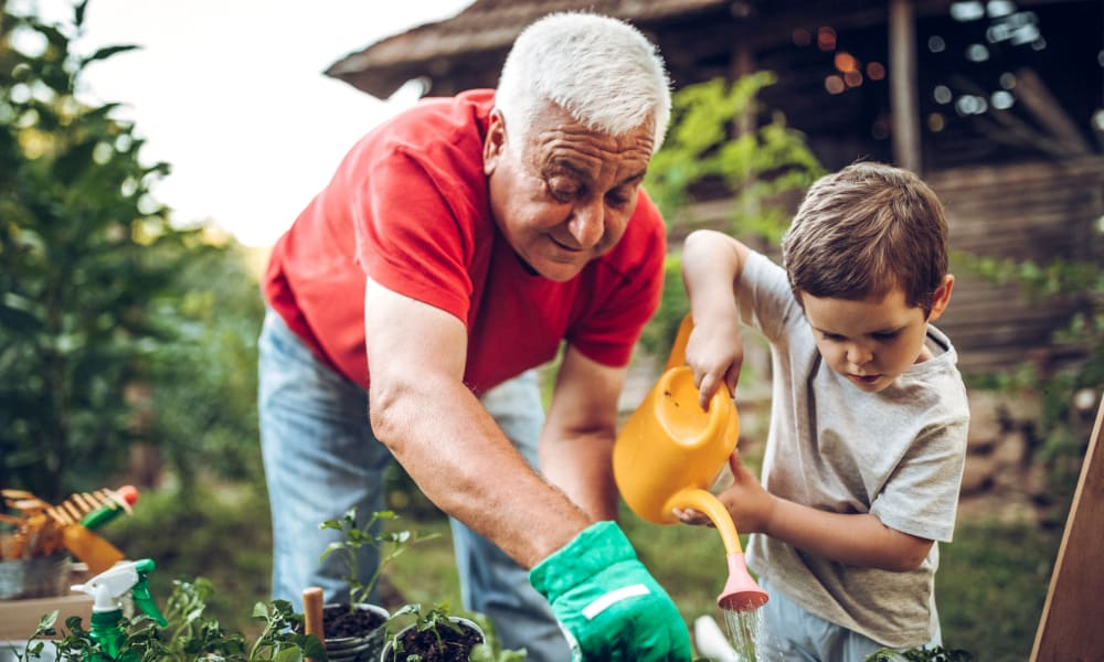 Resident and a child gardening at Amaran Senior Living in Albuquerque, New Mexico.