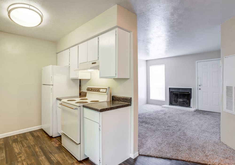 Modern kitchen and living room at Riverstone Apartments, TX