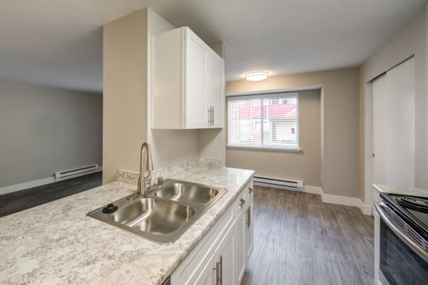 Upgraded kitchen at Chestnut Hills Apartments