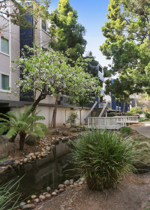 Lush landscape for your furbaby at Ballena Village Apartment Homes in Alameda, California