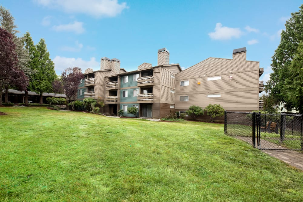Large grassy area at Latitude Apartments in Everett, Washington