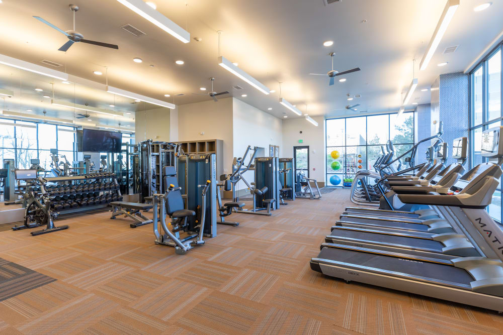 Treadmills in the fitness center at The Alcott in Downtown Denver, Colorado