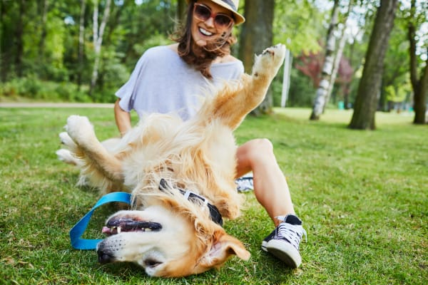 Resident enjoying a day at the park with her puppers at Deer Valley Apartment Homes in Roseville, California